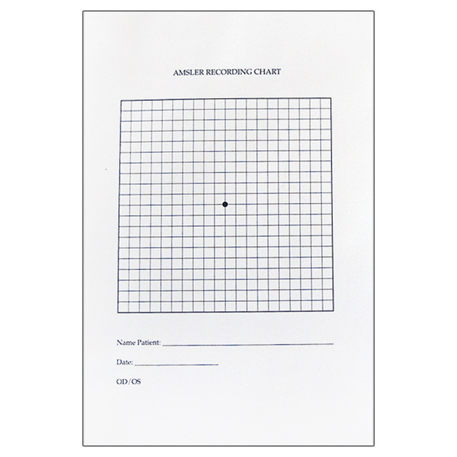 It is a photo of Persnickety Printable Amsler Grid